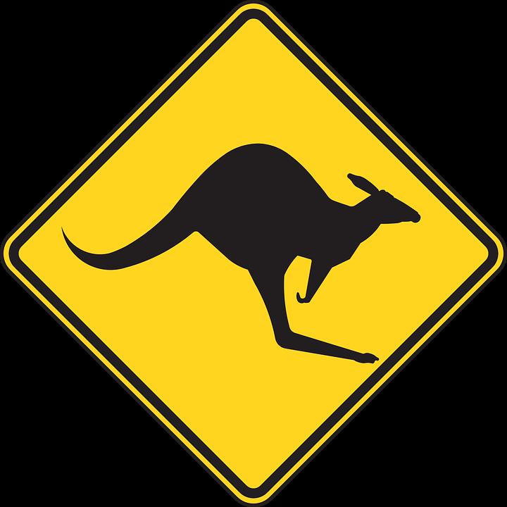Kangaroo warning signs in Australia.